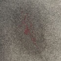 Specialist Stain Removal Geelong 2